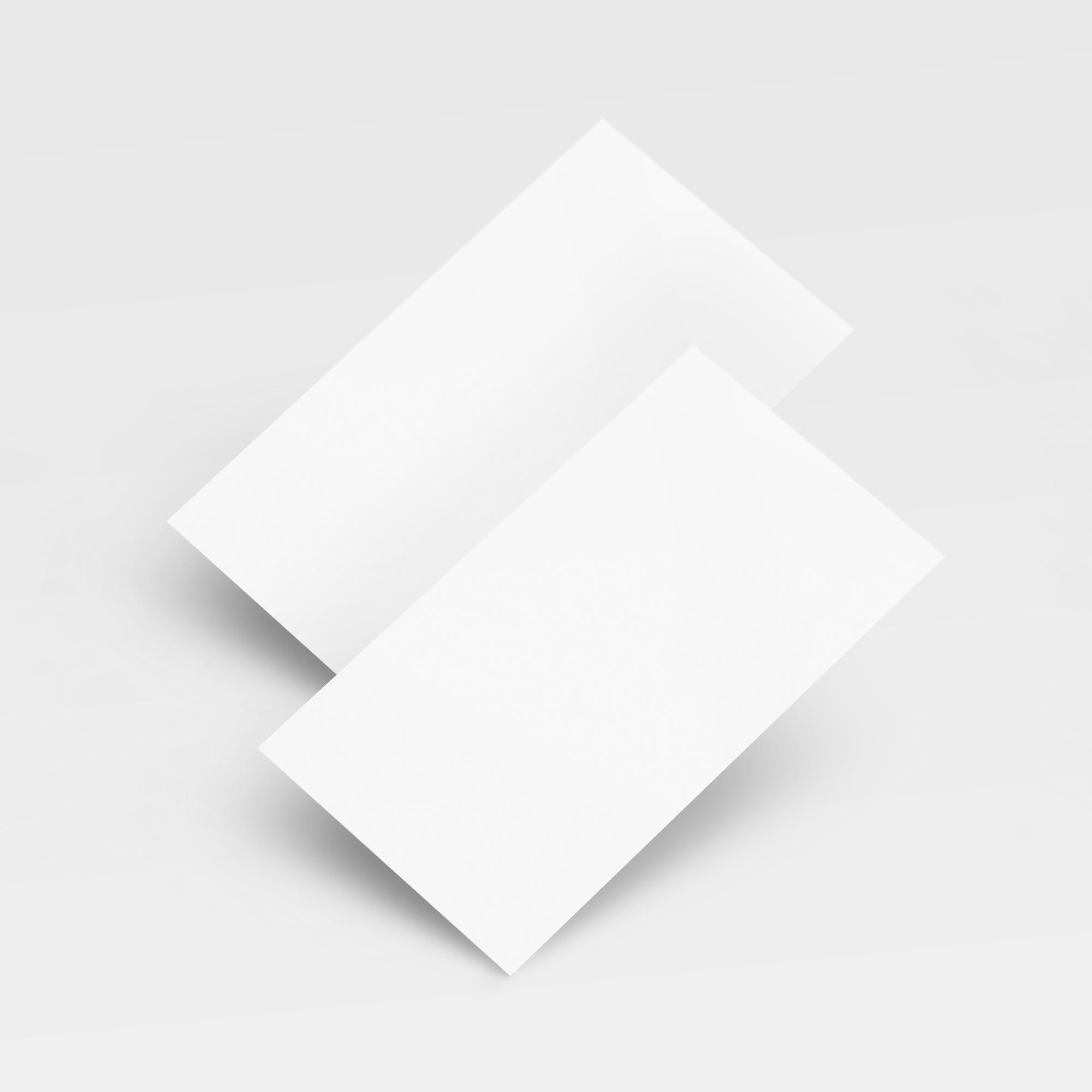 Visiitkaart- Standart 100tk/komplekt